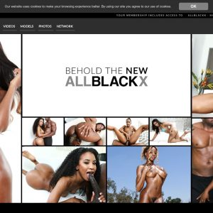 AllBlackX - Premium Black Porn Sites